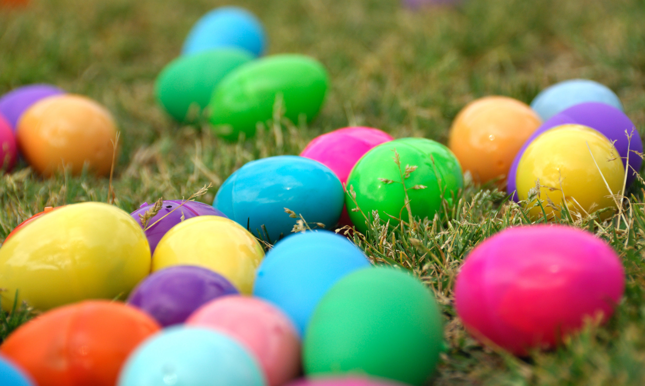 Easter Egg Hunt Manchester by the Sea
