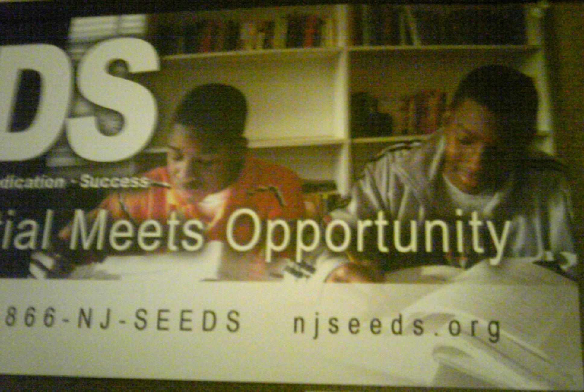 3. Seeds!