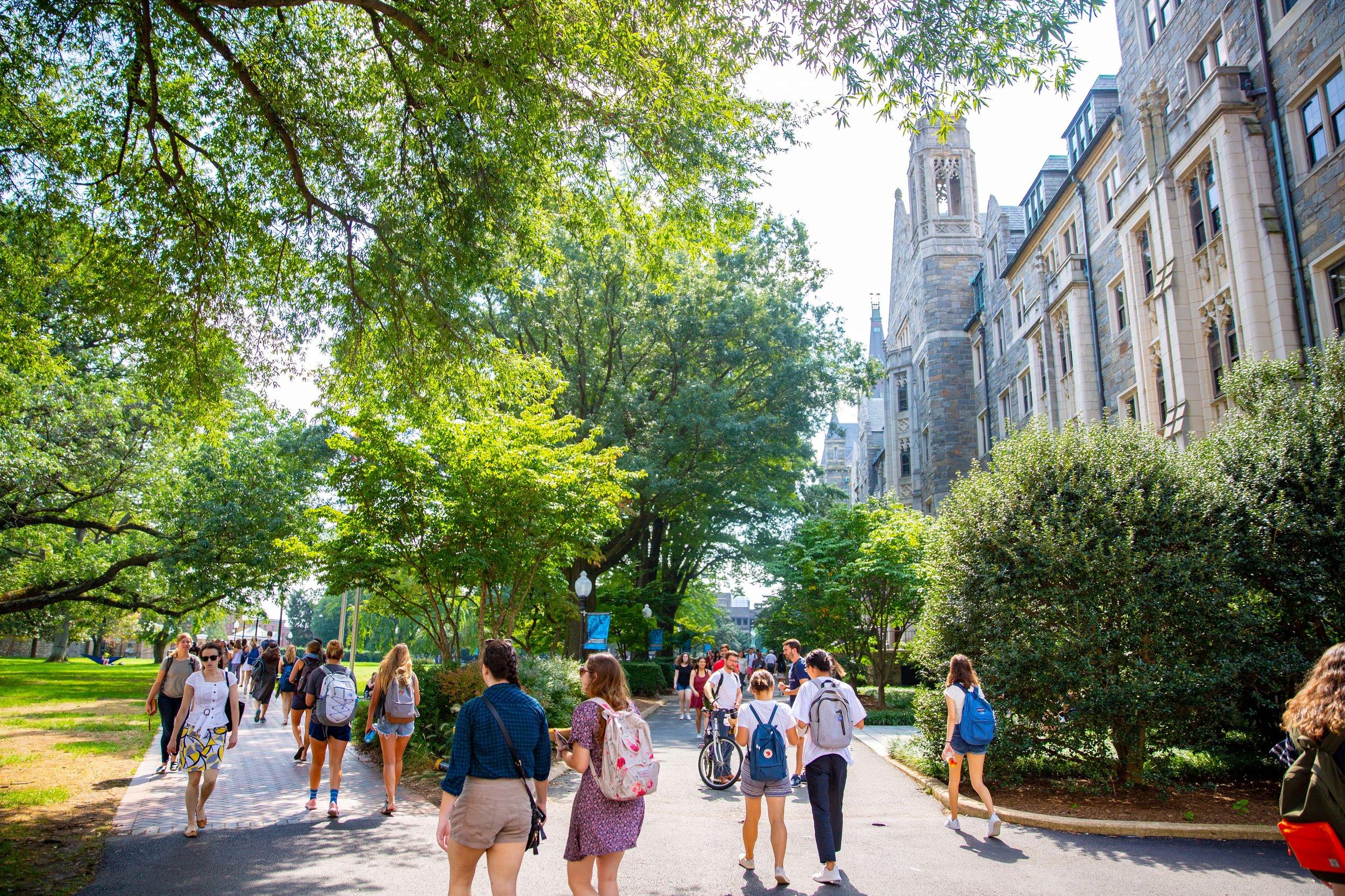 Georgetown Stories Application