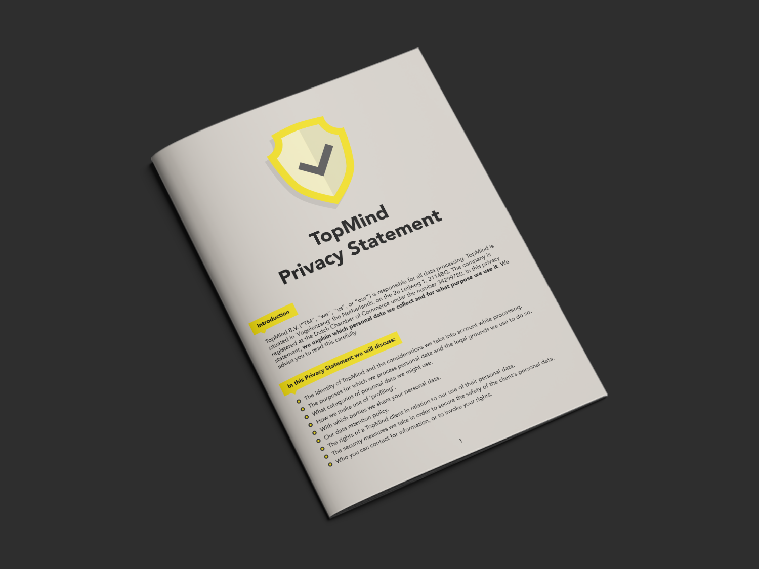 topmind-privacystatement-mockup-v2.png