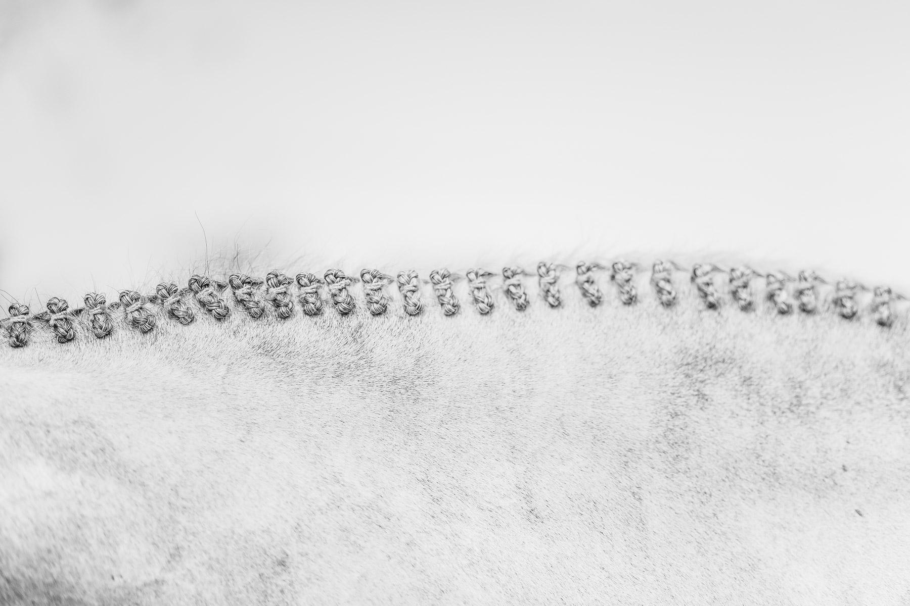AliciaRiusPhotography-22.jpg