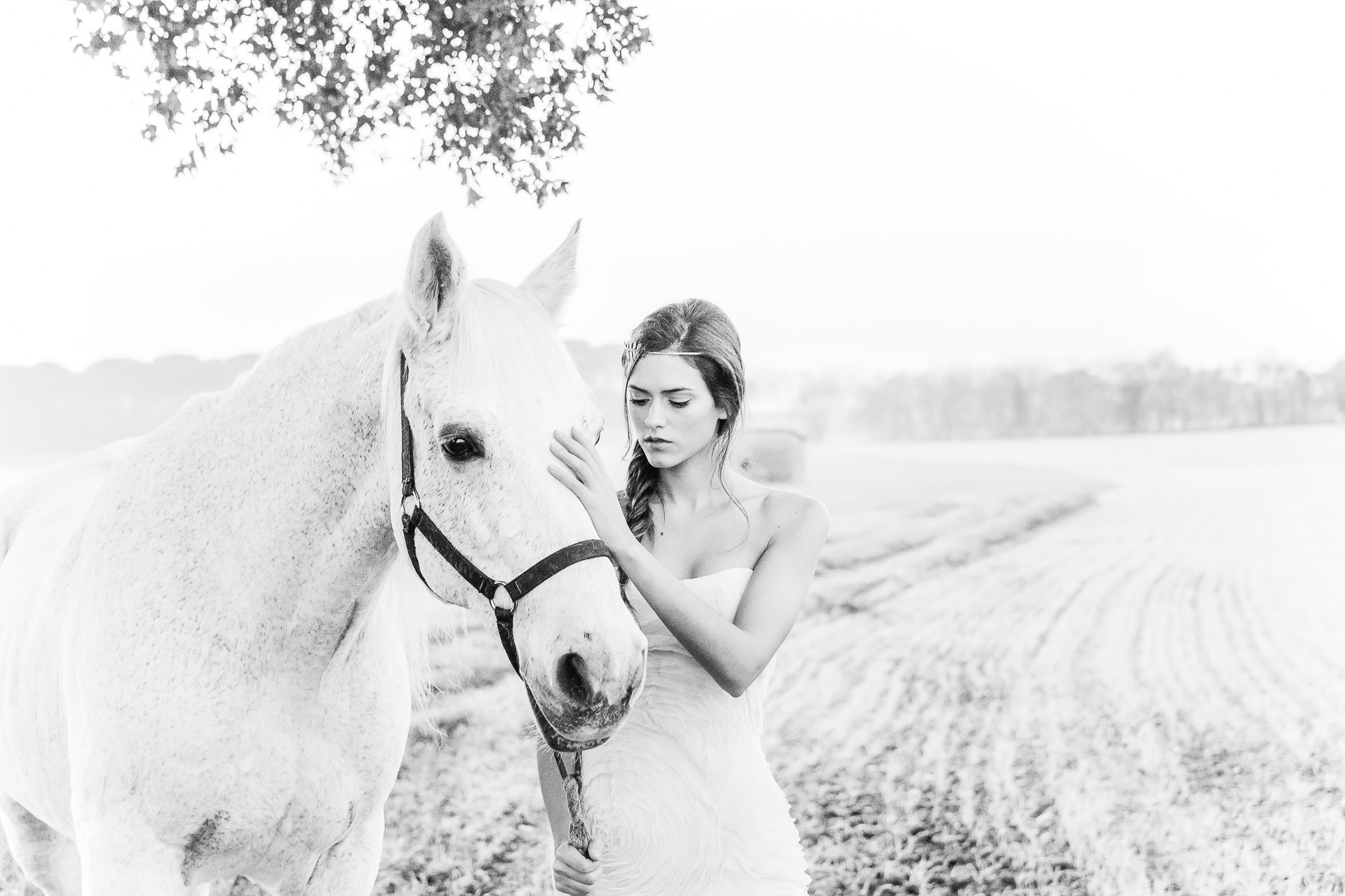 bride-and-horse-hotos-together-inspiration