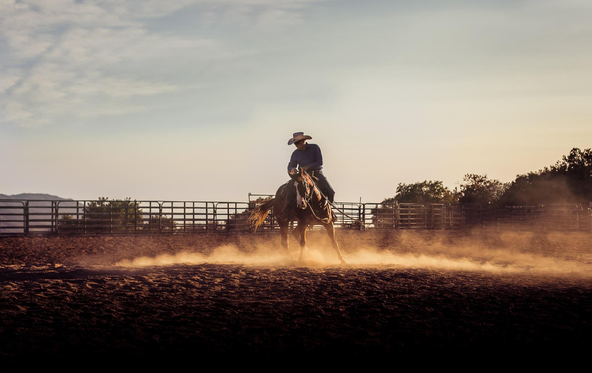 Ojai-horsmanship-equine-school-photography-85.jpg