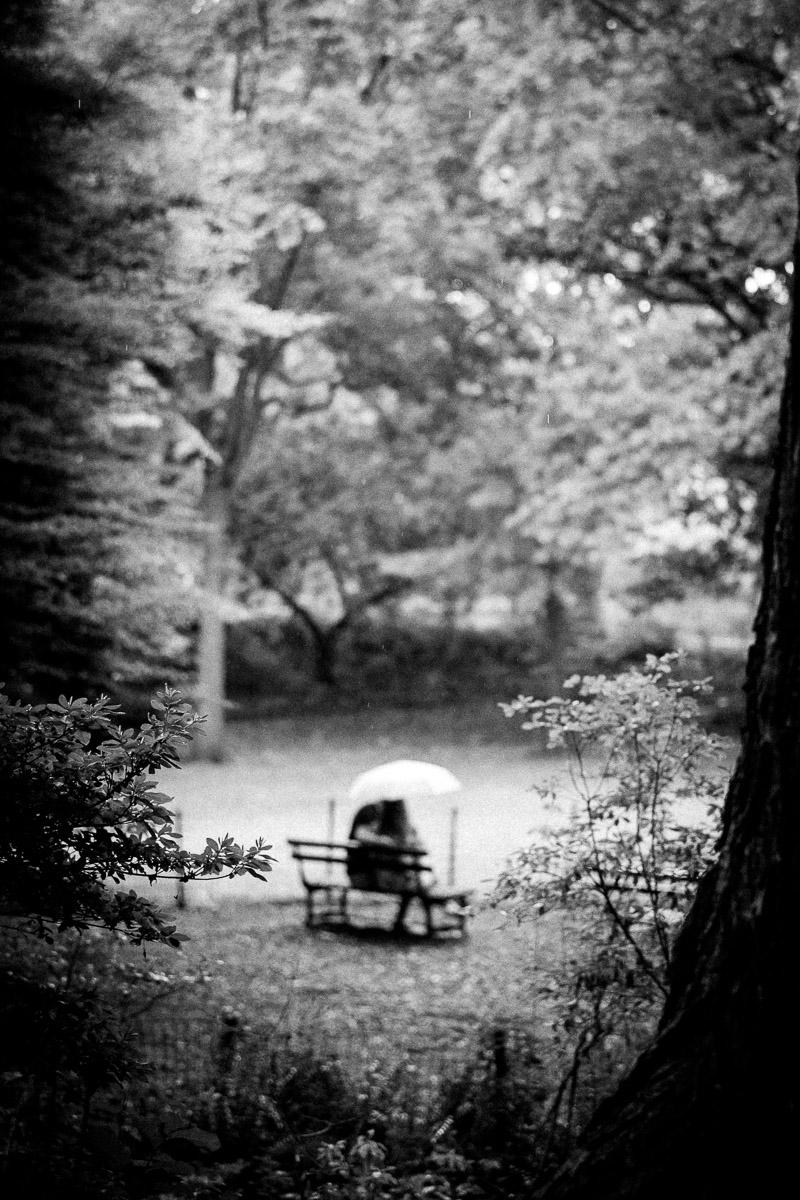 couple-central-park-new-york.jpg