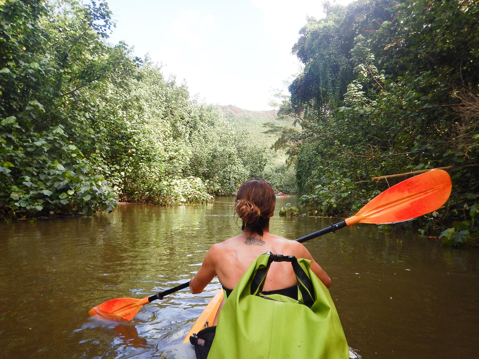 wailua-river-kayak-adventure.jpg