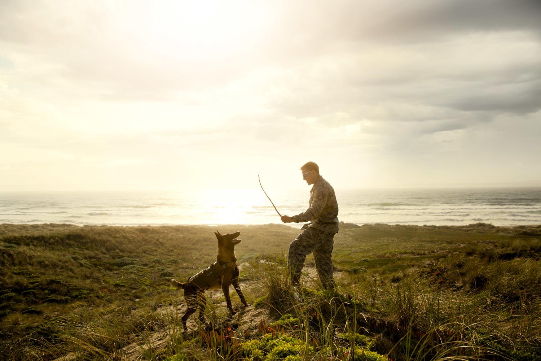 military-man-playing-with-dog-belgian-millanois.jpg