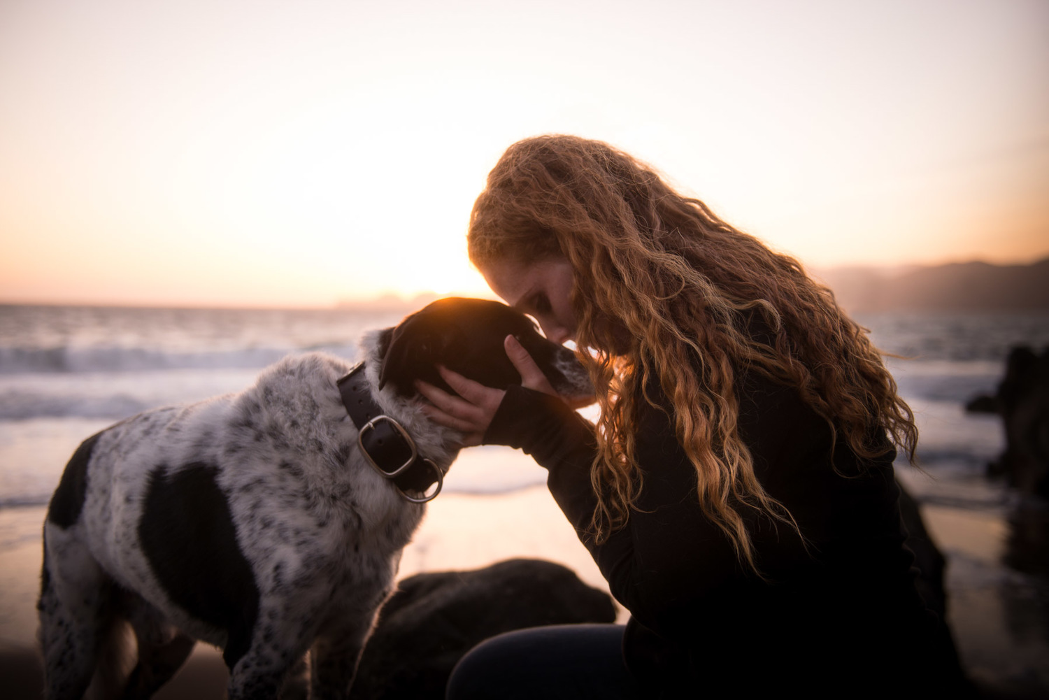 Girl and her 12 year old senior dog during sunset.