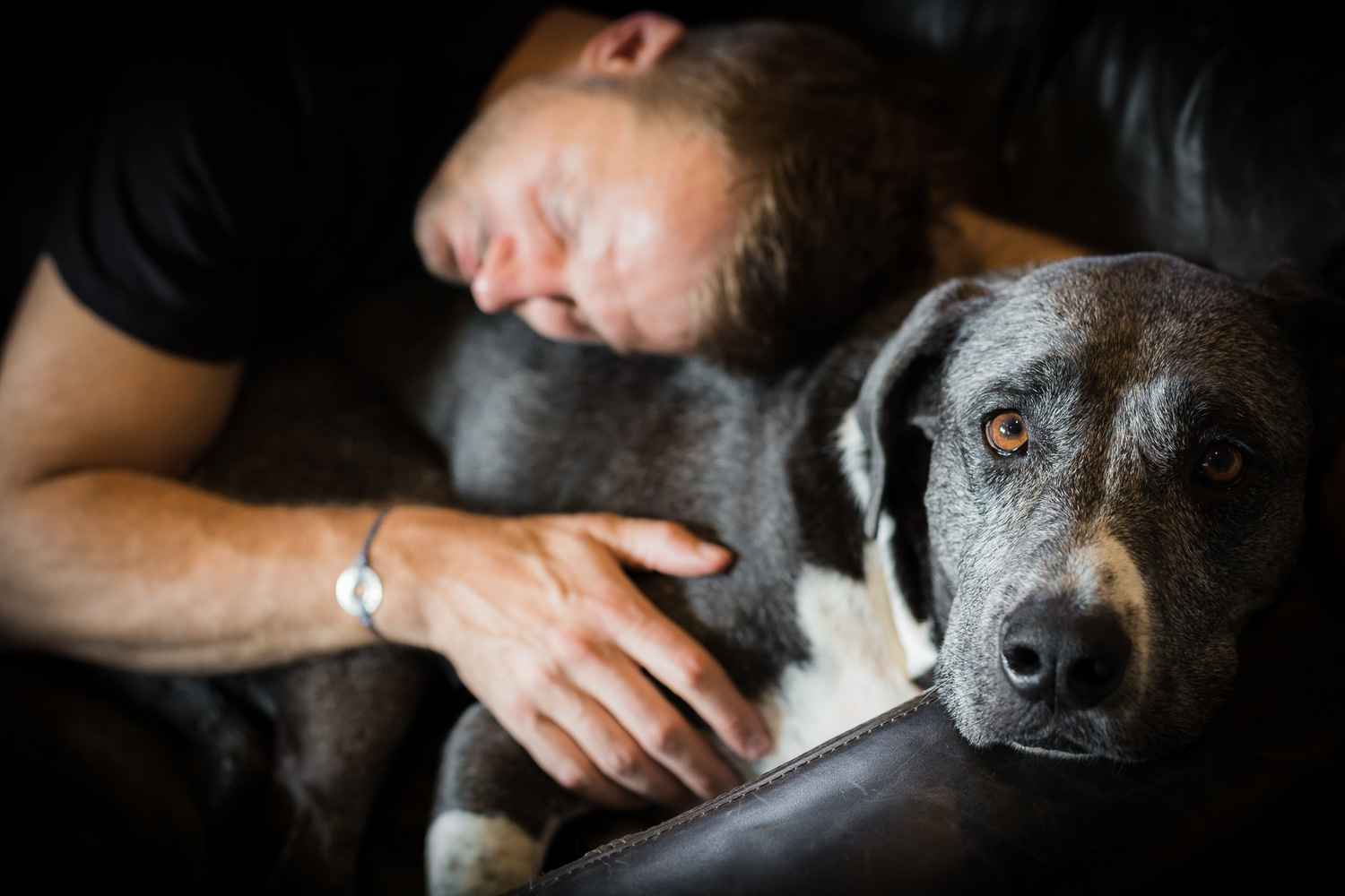 Owner cuddling on a couch his rescue dog.