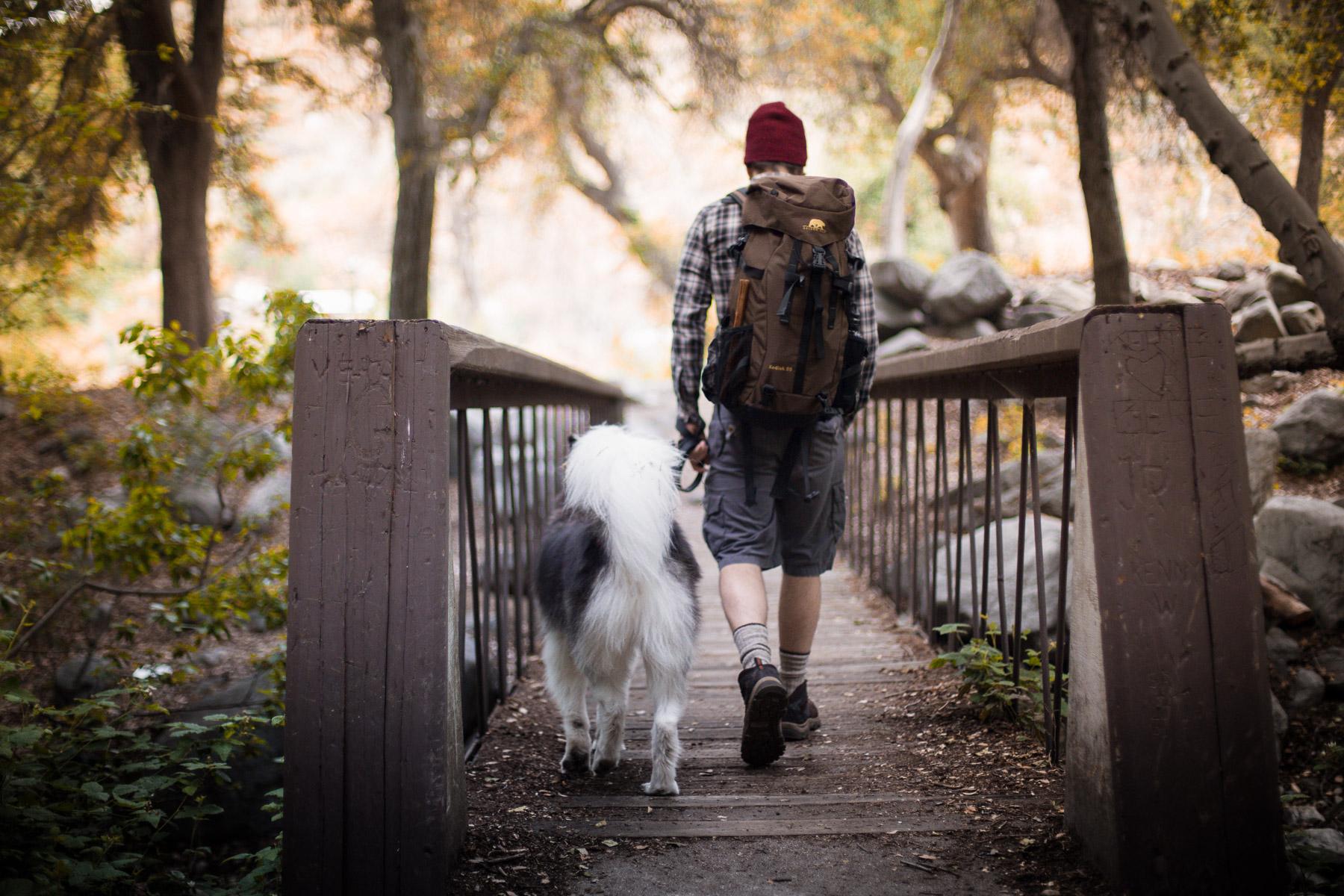 beautiful-photo-dog-owner-walking-sunset-bridge-hiking-adventures-dog-photographer.jpg