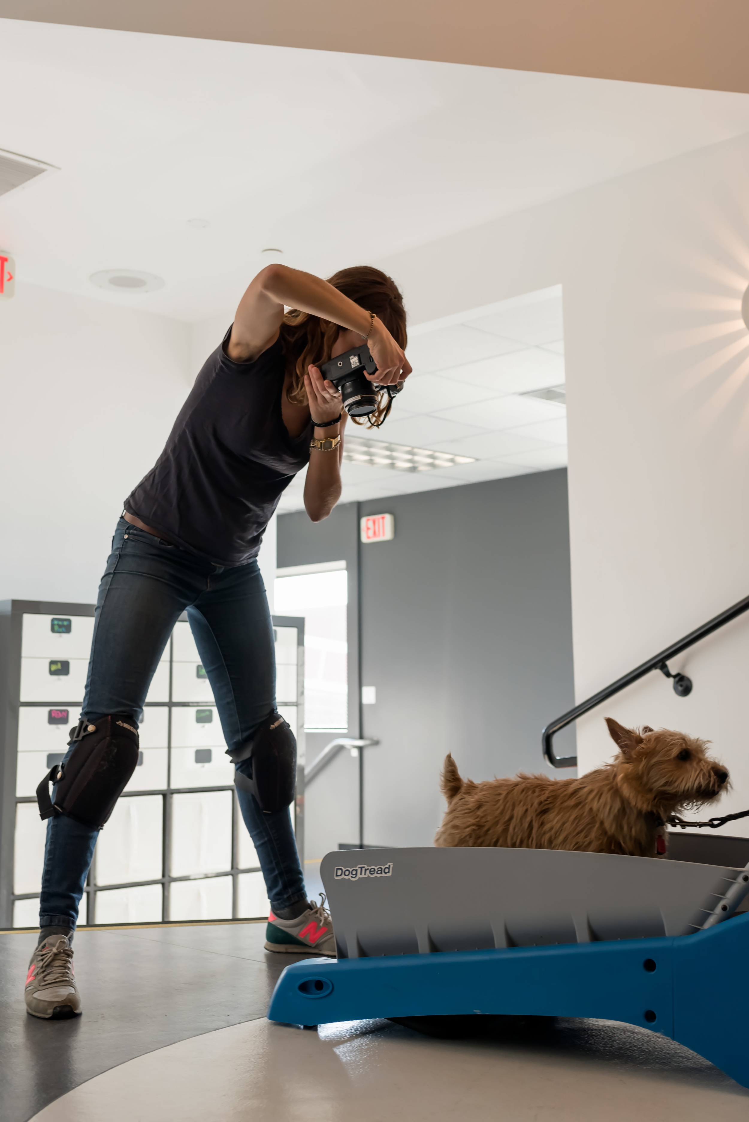 behind-the-scenes-dog-photographer-working-on-set-3.jpg