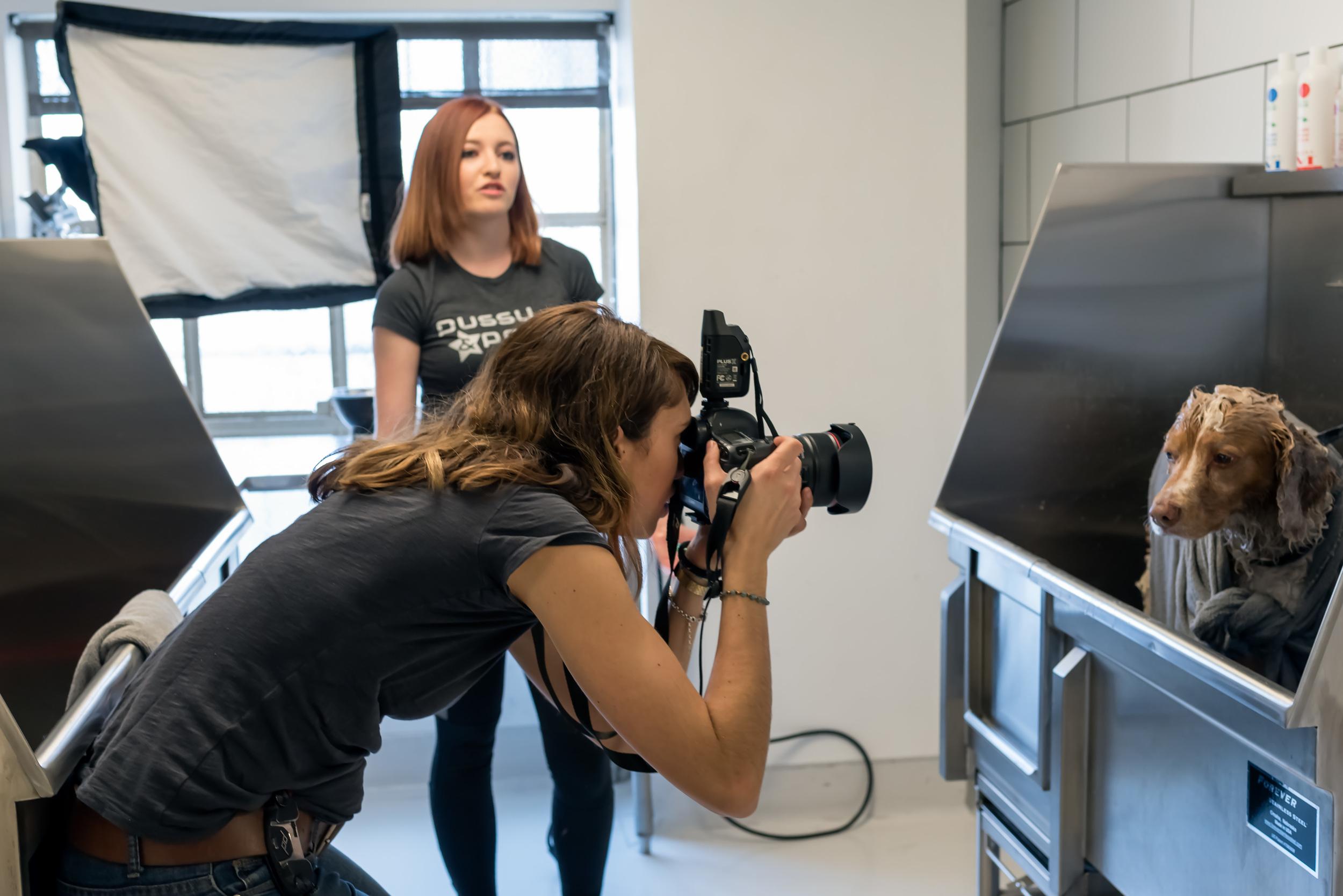 behind-the-scenes-dog-photographer-working-on-set-7.jpg