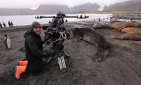 Wildlife photographer photographing sea lions in the Antarctic .  Photo courtesy of Atlantic Productions.