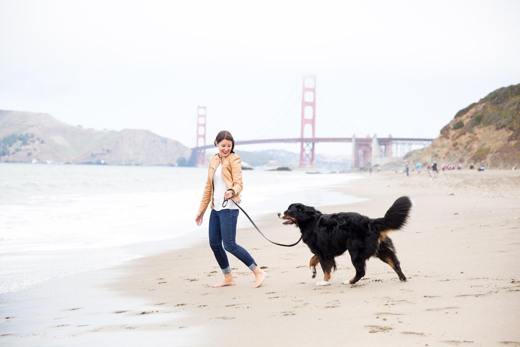 girl-running-with-swiss-bernese-dog-baker-beach-commercial-dog-photos