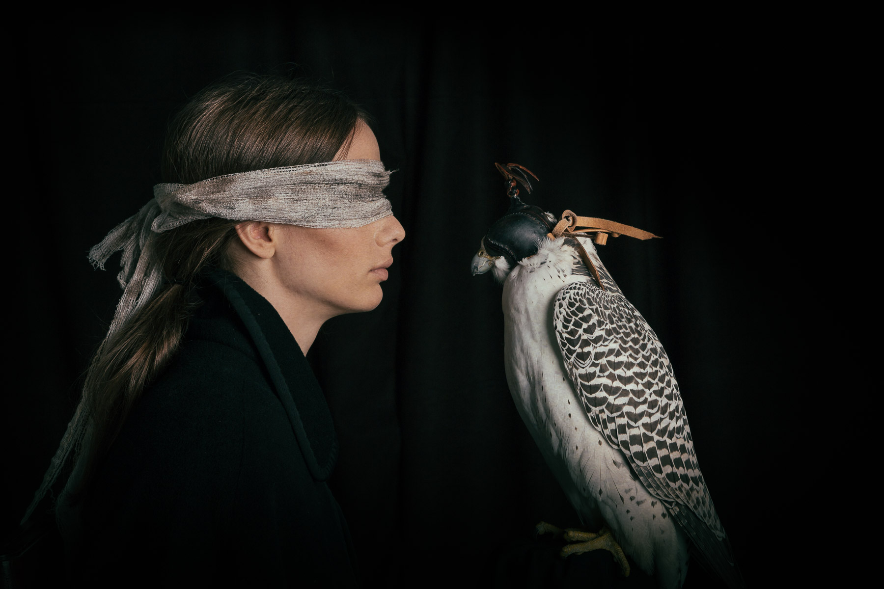 lady-with-white-falcon.jpg