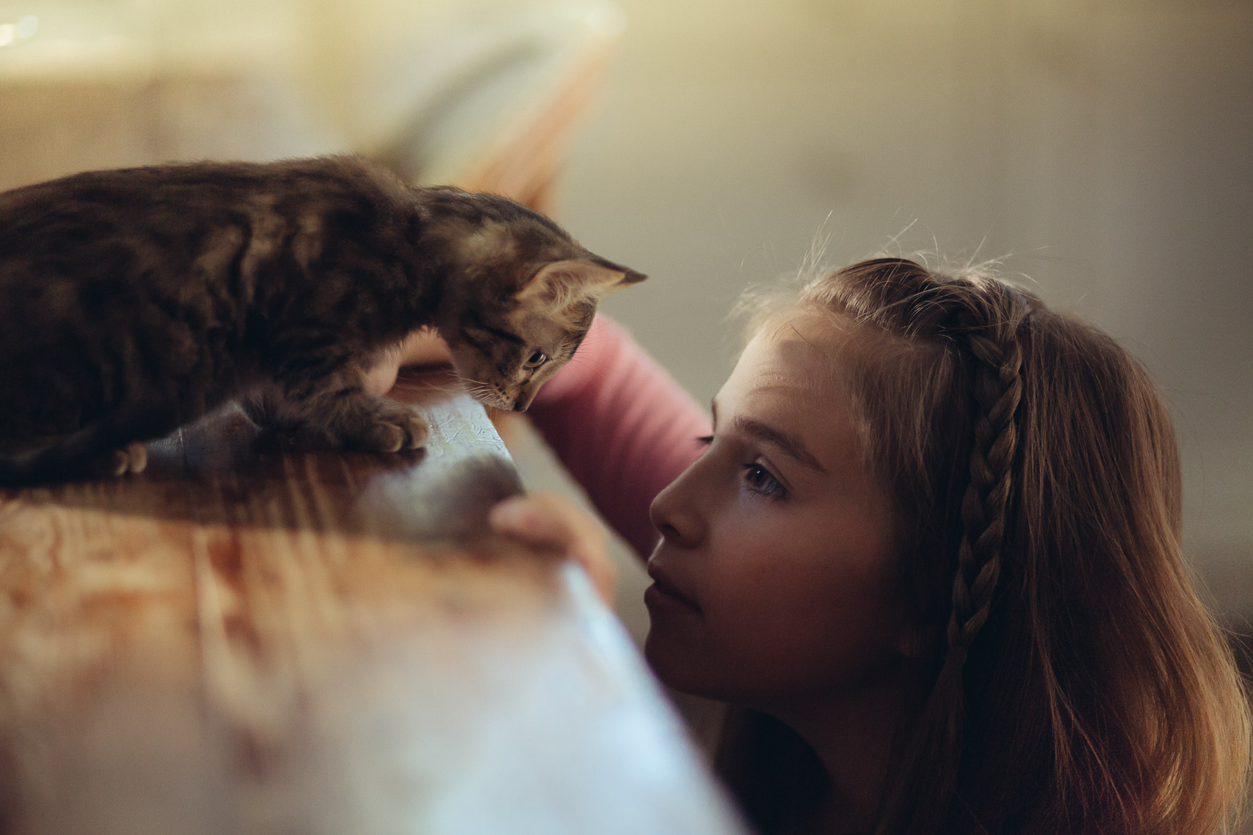 cat-photography-little-girl-with-cat-looking-at-each-other.jpg