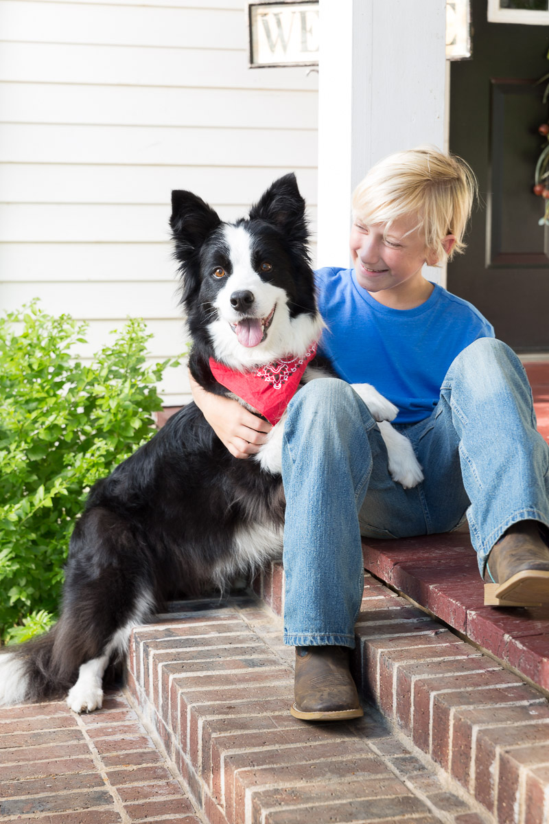 dog-smiling-camera-border-collie-with-bandana-and-kid.jpg