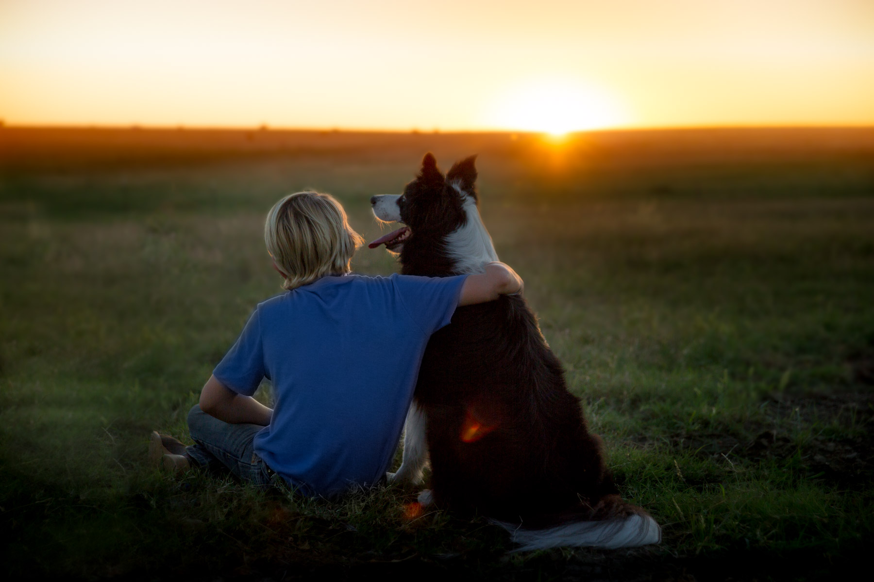 kid-hugging-dog-collie-sunset-outdoors-dog-photography.jpg