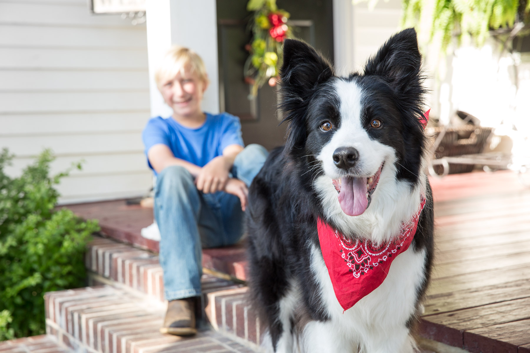 kid-with-dog-looking-camera-smiling-dog-portraits.jpg