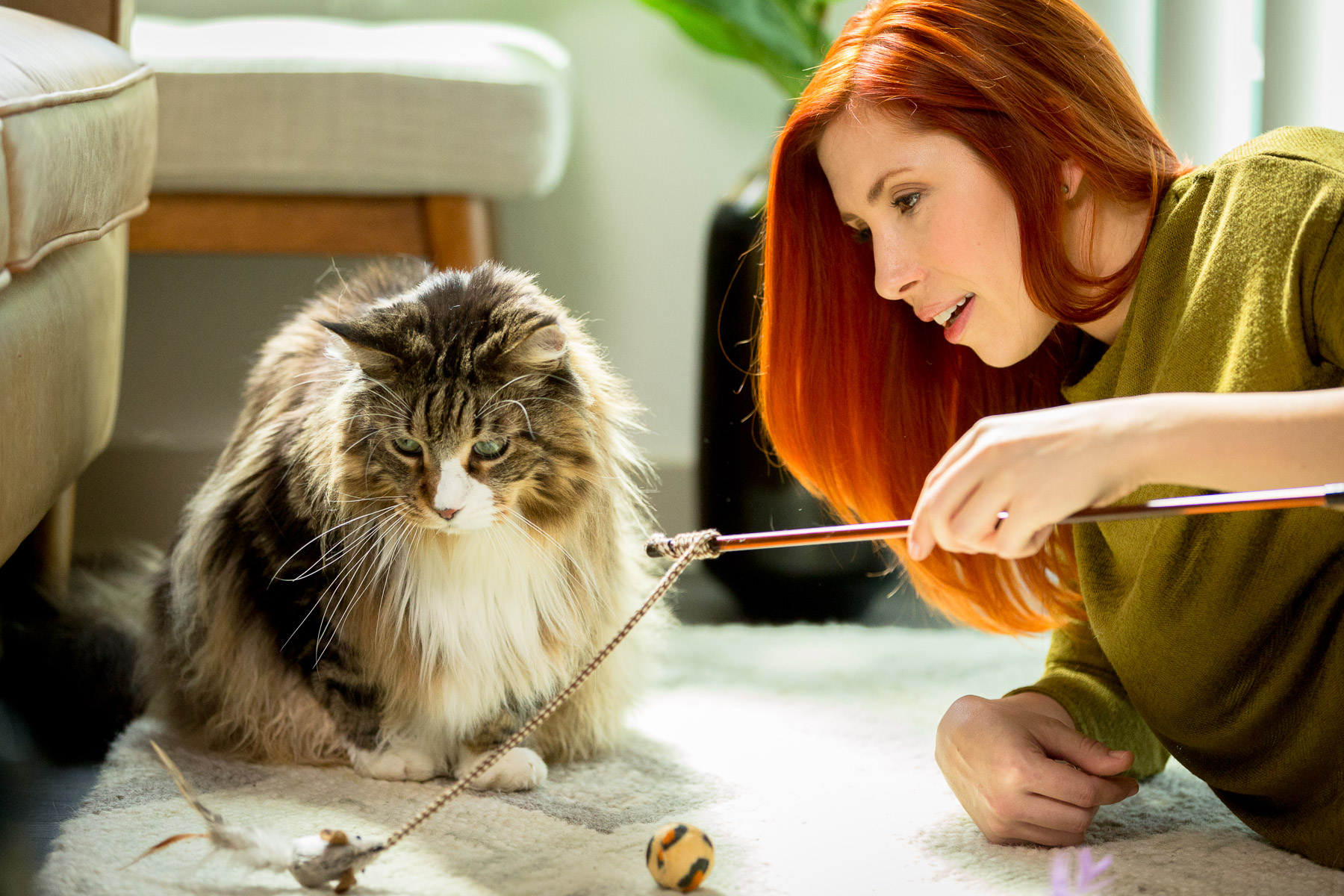 girl-playing-with-cat-pet-photography.jpg