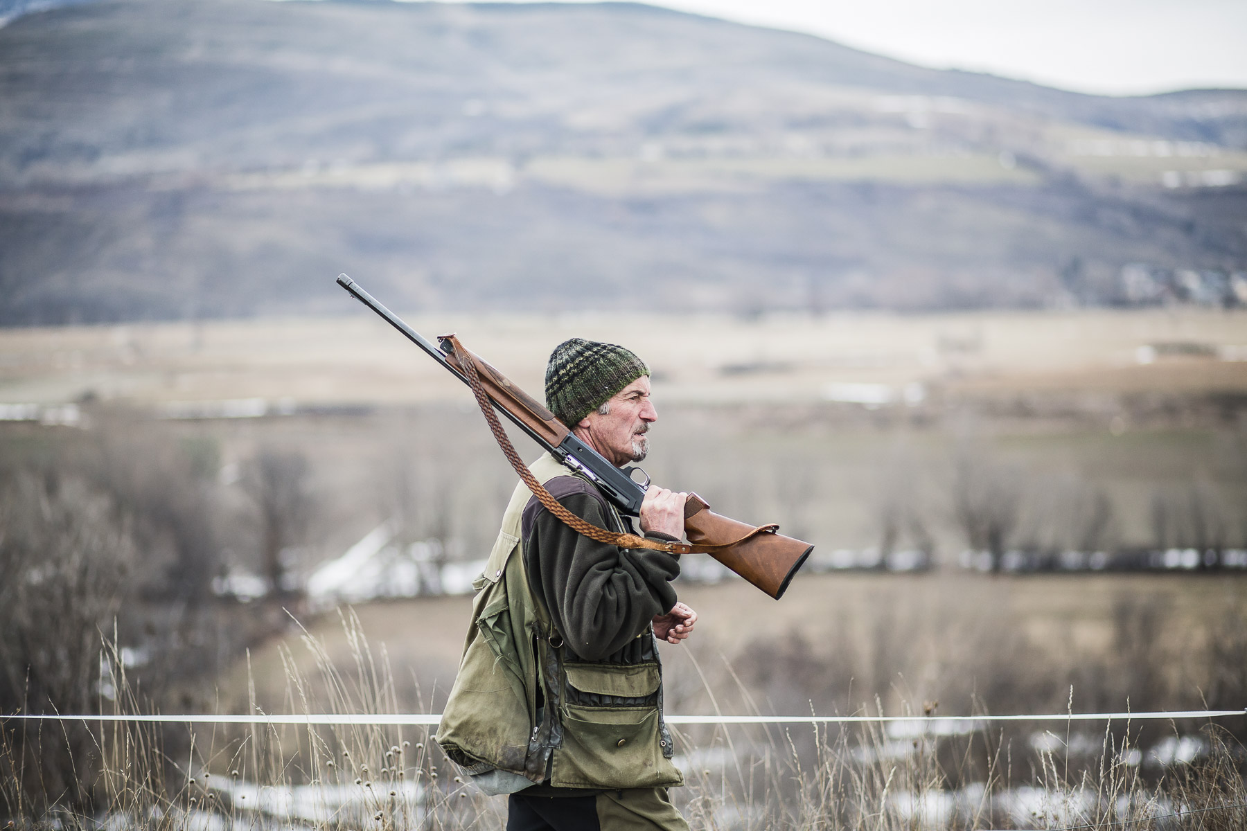 1dog-lifestyle-photographer-hunter-dogs-fetching-pheasants-nature-outdoors-bloodhounts-.jpg