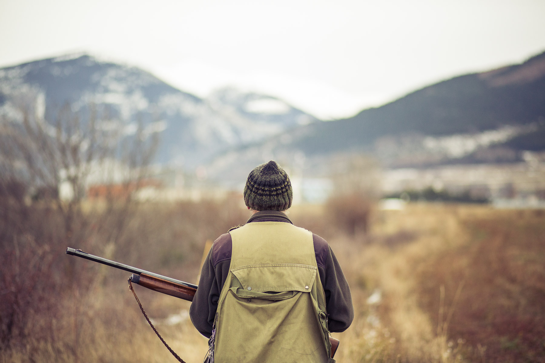 3dog-lifestyle-photographer-hunter-dogs-fetching-pheasants-nature-outdoors-bloodhounts-.jpg
