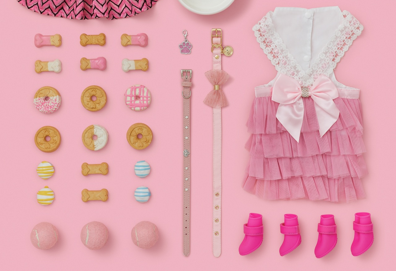 dog-cookies-sweets-bakery-pink-dress-rain-boots-dogs-collar-paw-tag.jpeg