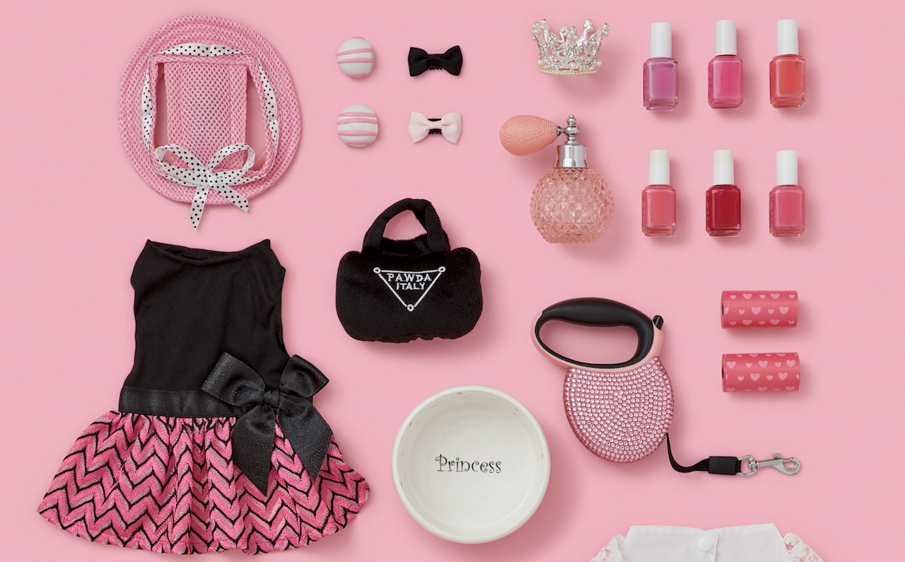 dog-princess-accessories-dress-channel-purse-dog-leash-nail-polish-colors-summer-hat-dog-bowl-clips.jpeg