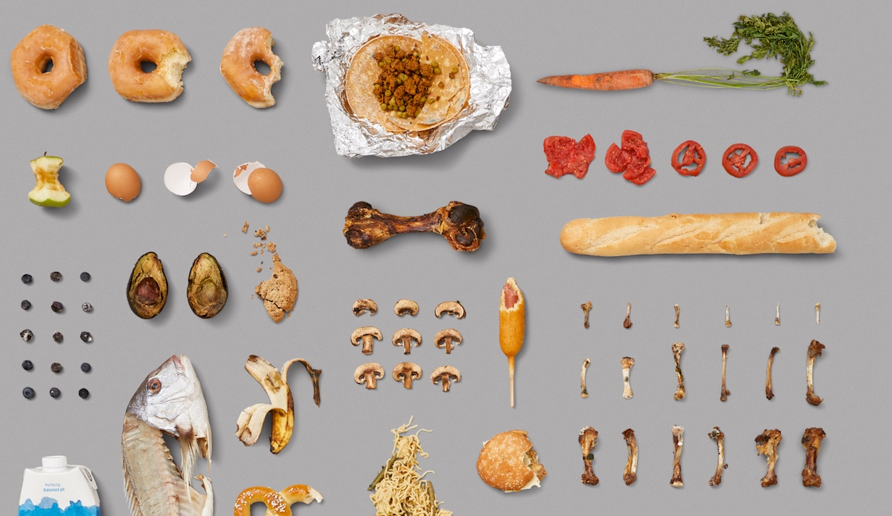 rotten-food-fast-food-american-diet-trash-fish-avocado-vegan-carrot-chicken-egs-cookies-donuts-tomatoes.jpeg