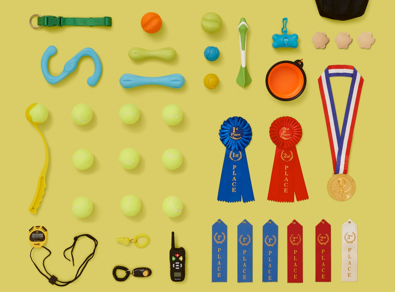 tennis-balls-fetching-toys-dogs-medals-ribbons-championship-undestructible-chewing-toys-collar-remote.jpeg