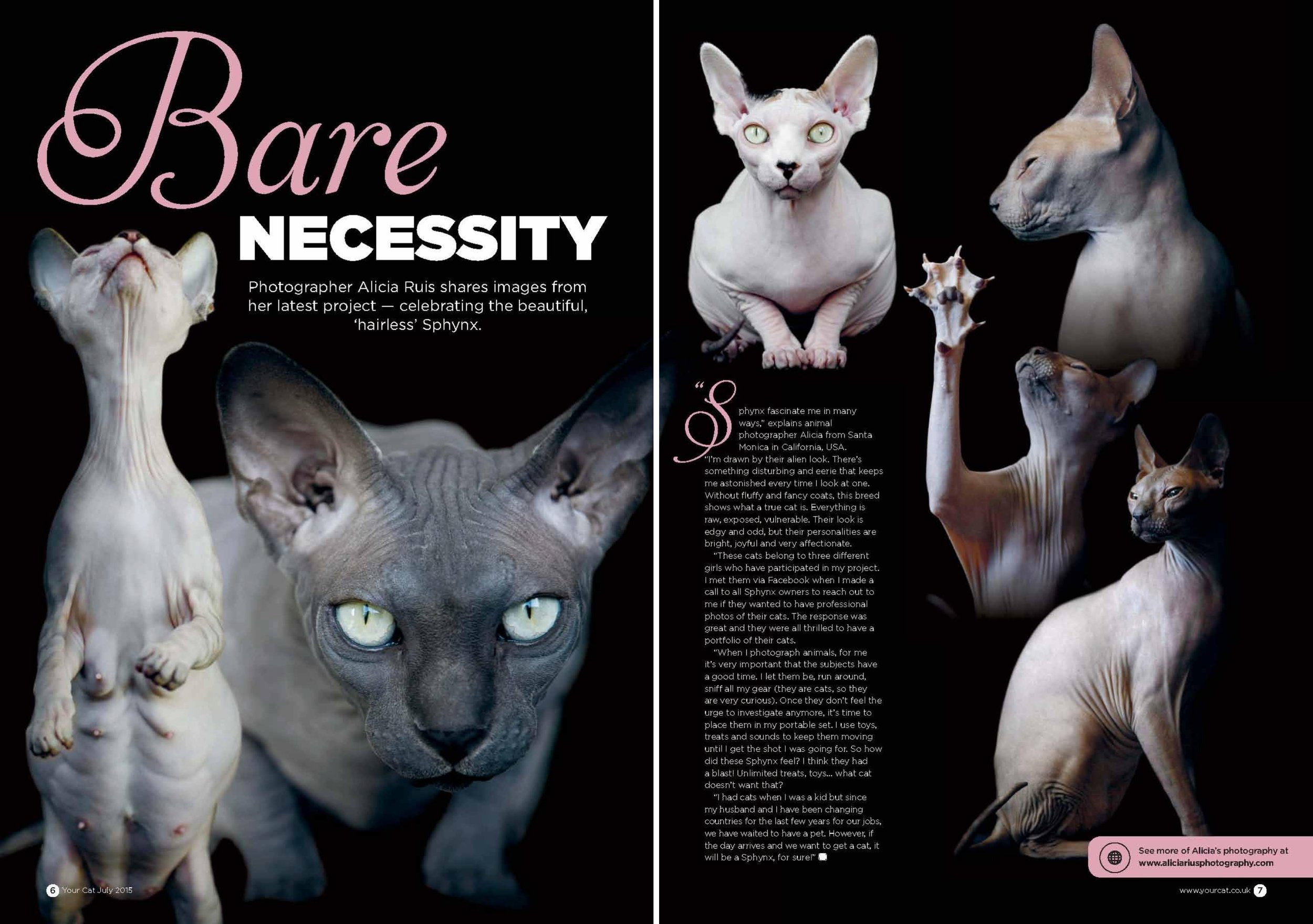 your-cat-magazine-uk-publication-sphynx-cat-alicia-rius-photography-tears.jpg