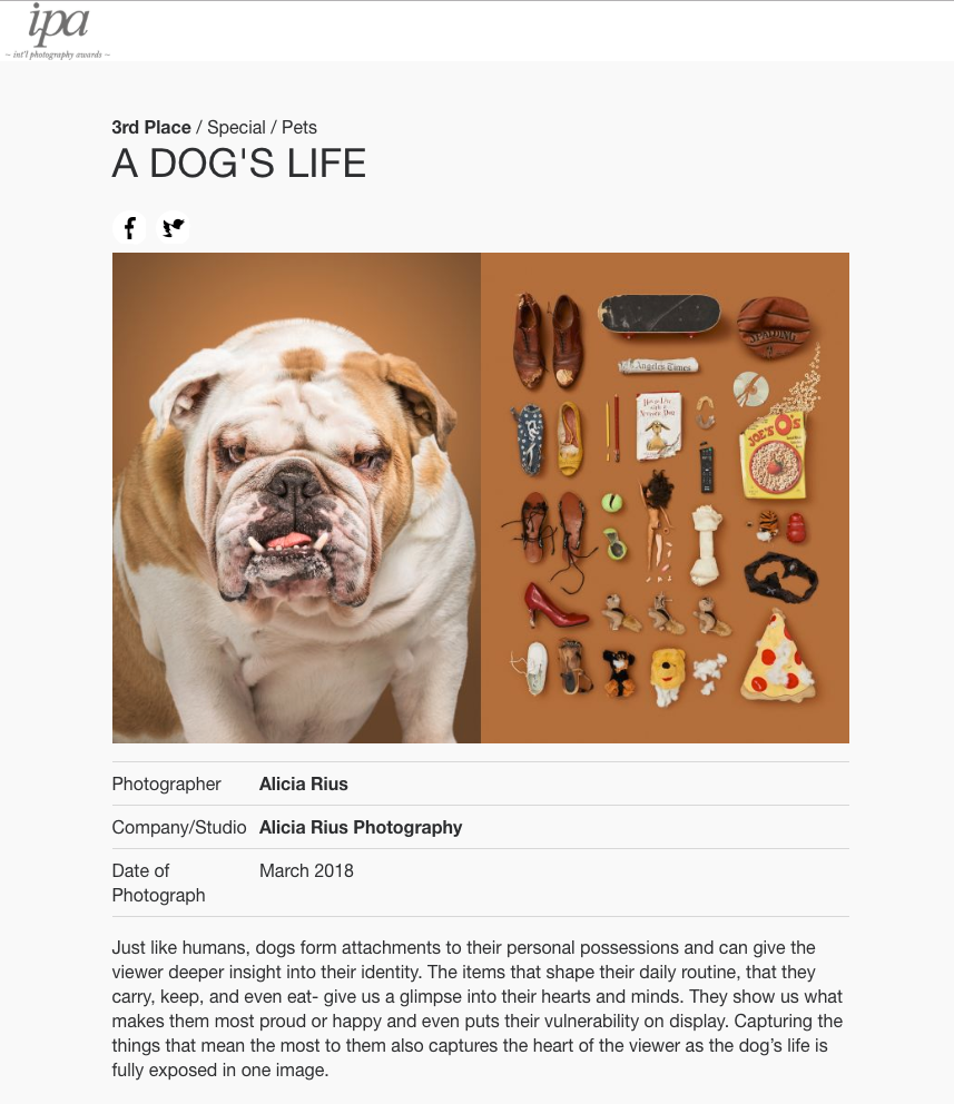 ipa-2018-awards-alicia-rius-a-dogs-life-pets-category-winner.png