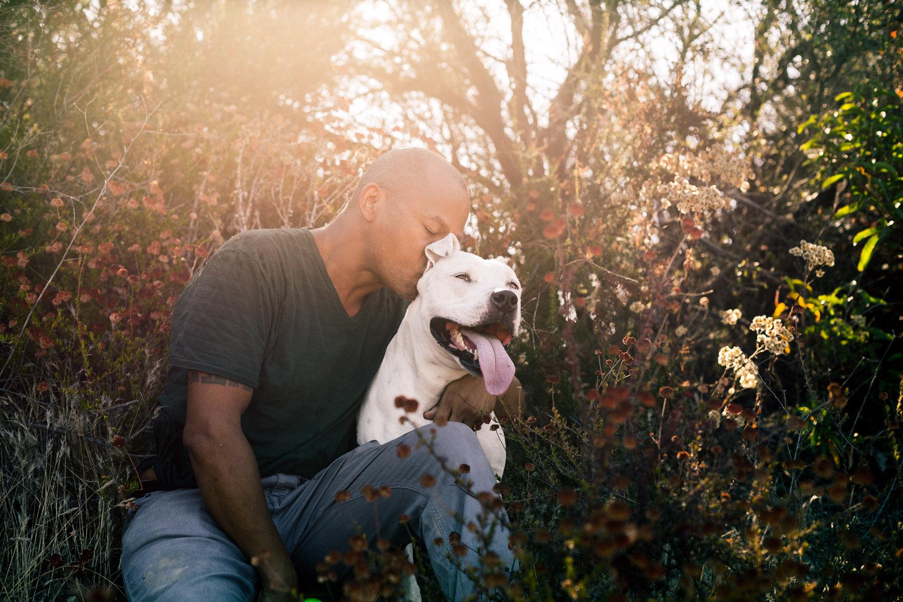 commercial-los-angeles-pet-photographer-man-kissing-dog-pitbull-sunset.jpg