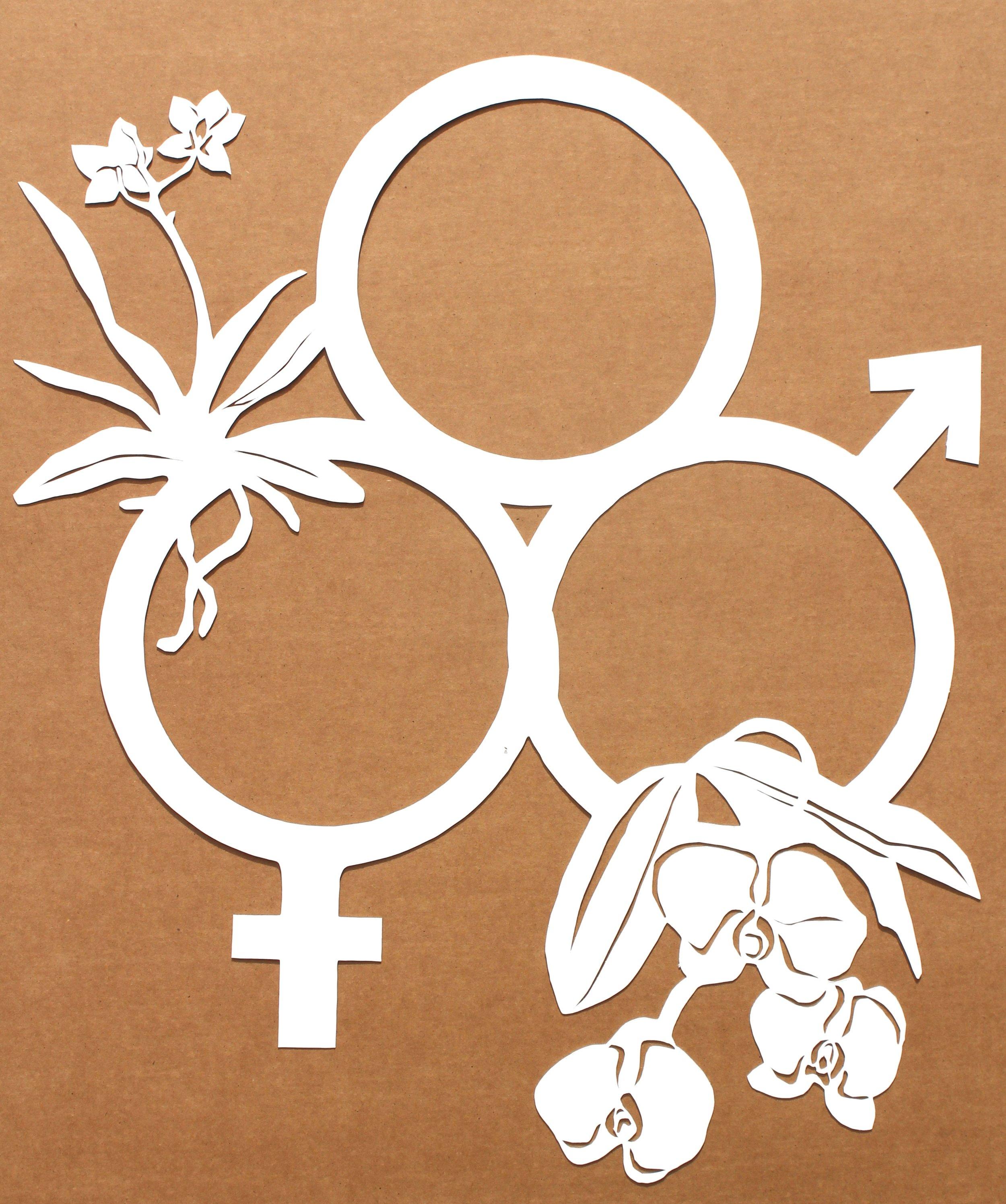 deco gender cut out.jpg final.jpg