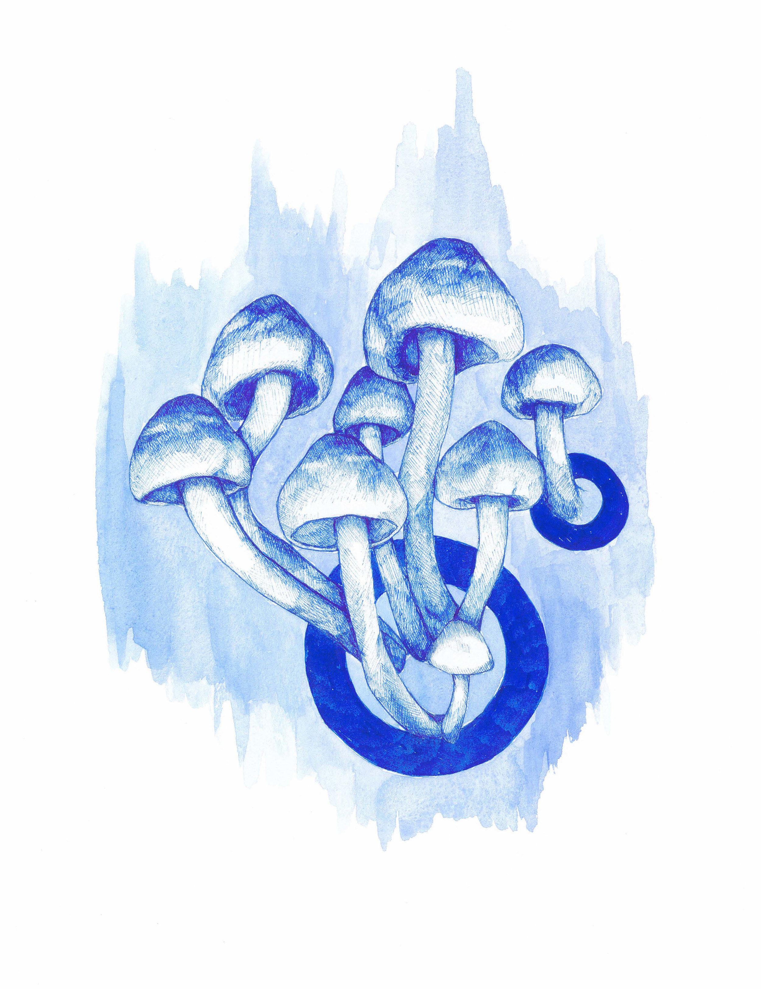 Mushroom_Drawing.jpg