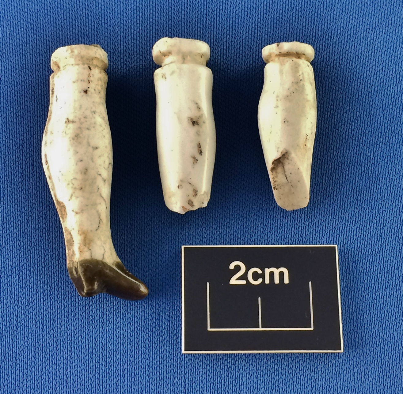Doll legs from garden