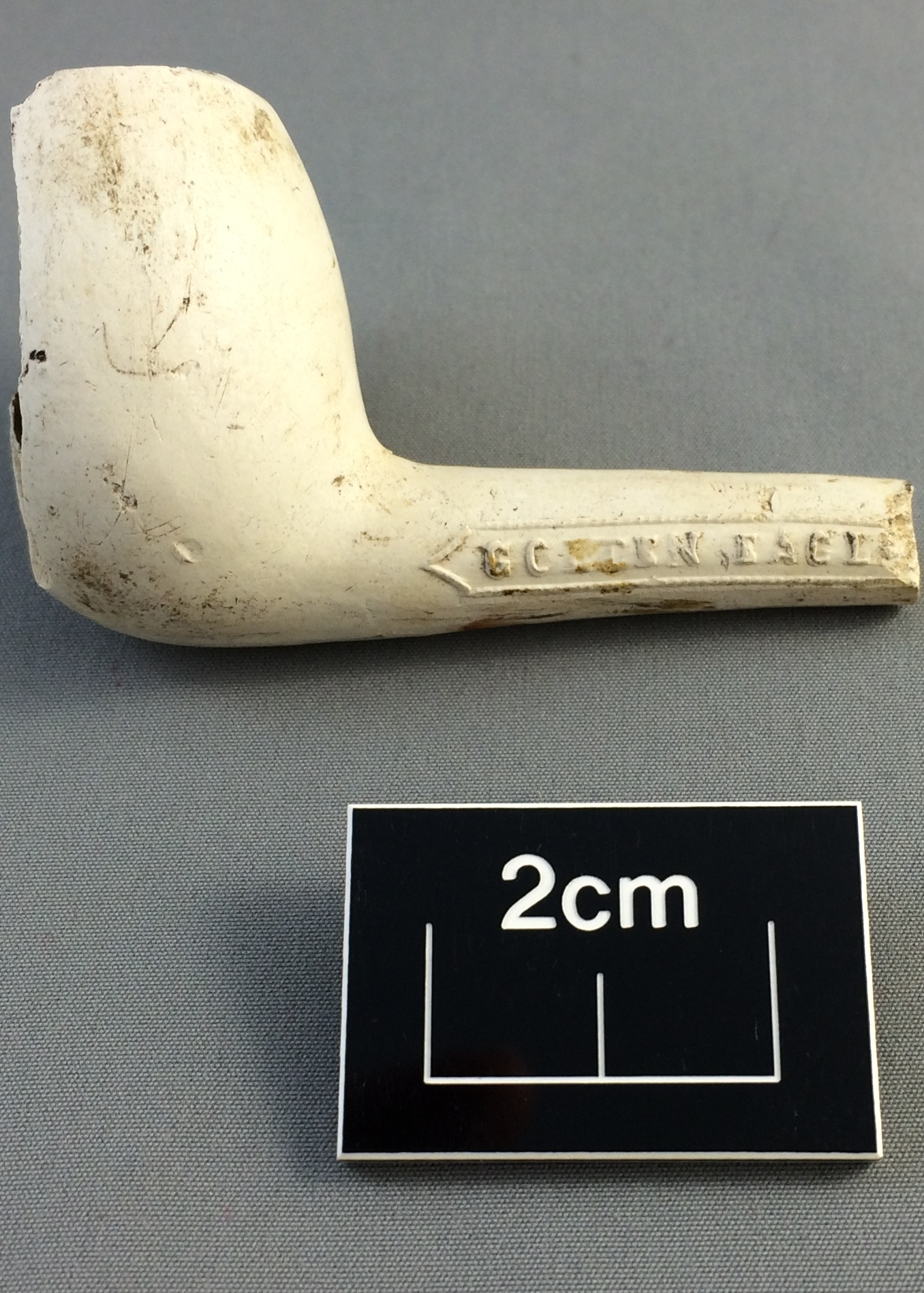 Clay pipe from a rubbish pit adjacent to the Cottage Hospital