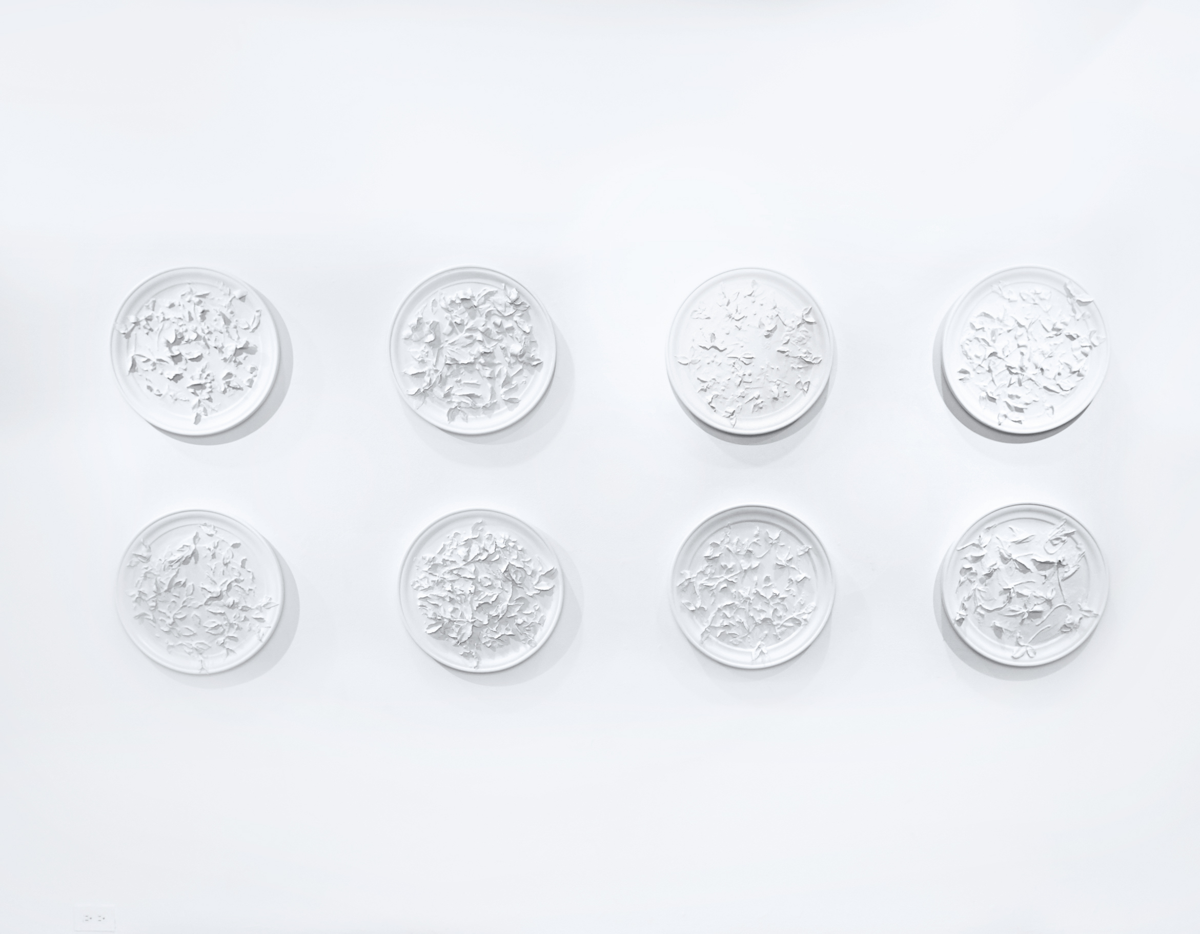 Natural Fractile Series  (installation view), 2018  Wood, gesso, plaster, oil paint, resin, cotton, paper  each 20 inches diameter