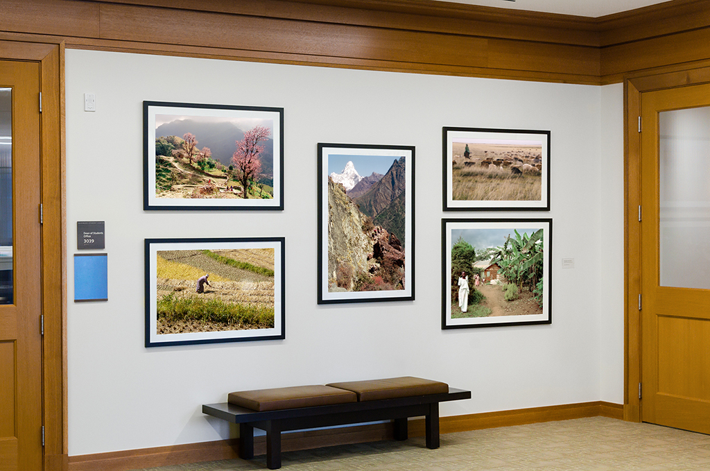 Public and private settings in which photographs have been or are being shown, including temporary exhibits and permanent installations.