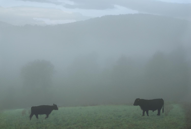 Dawn, Vermont