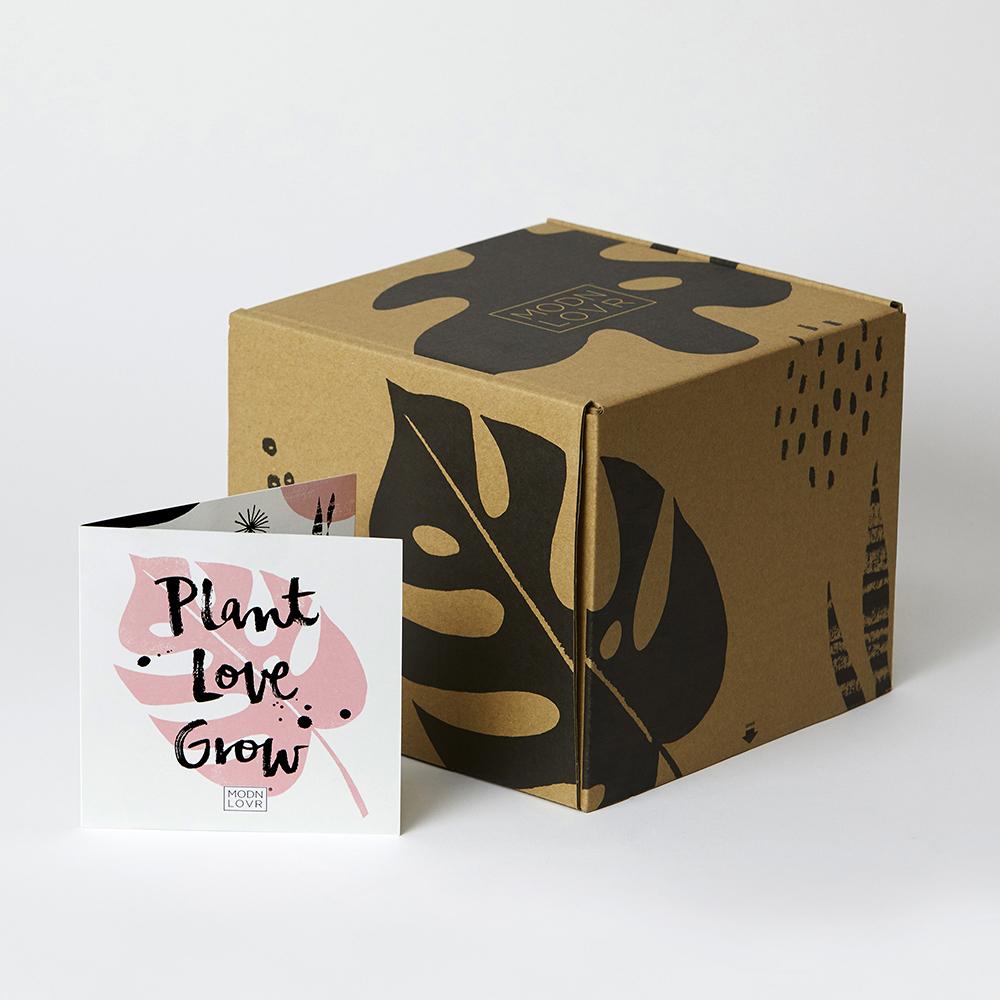 MODNLOVR_packaging_NerylWalker.jpg