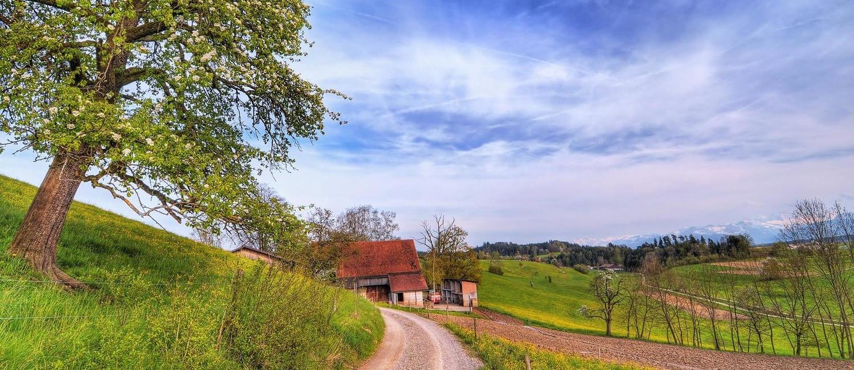 rural-scene-4.jpg