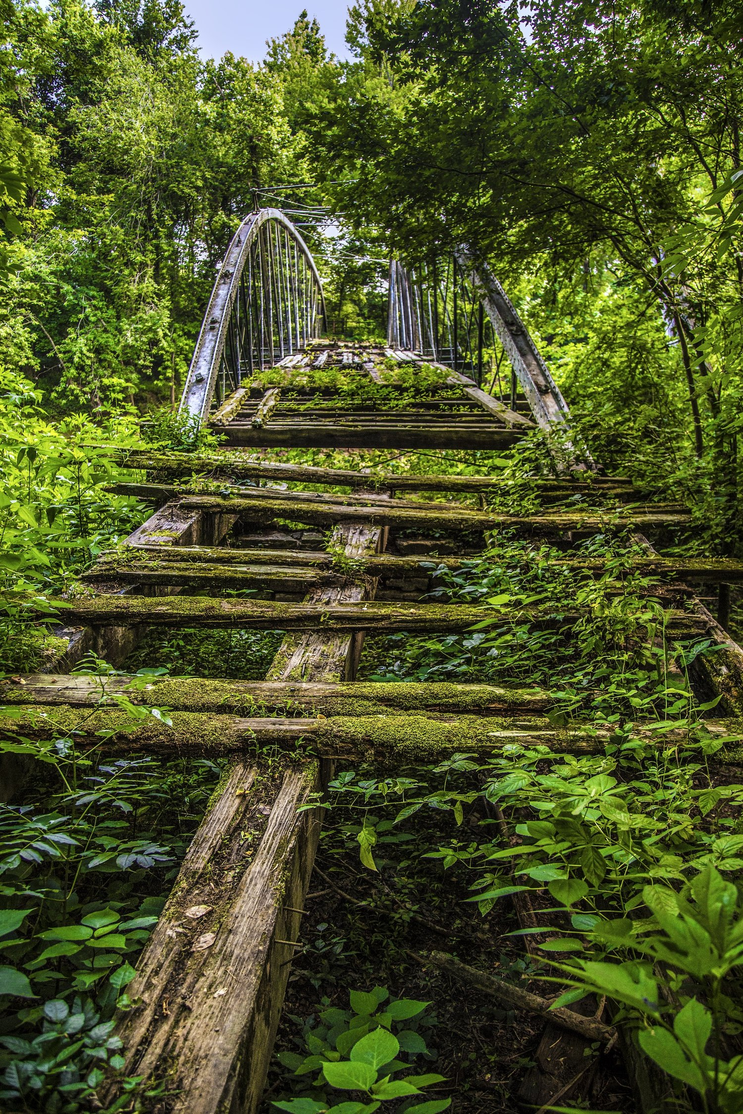 Springfield Des-Arc Bridge