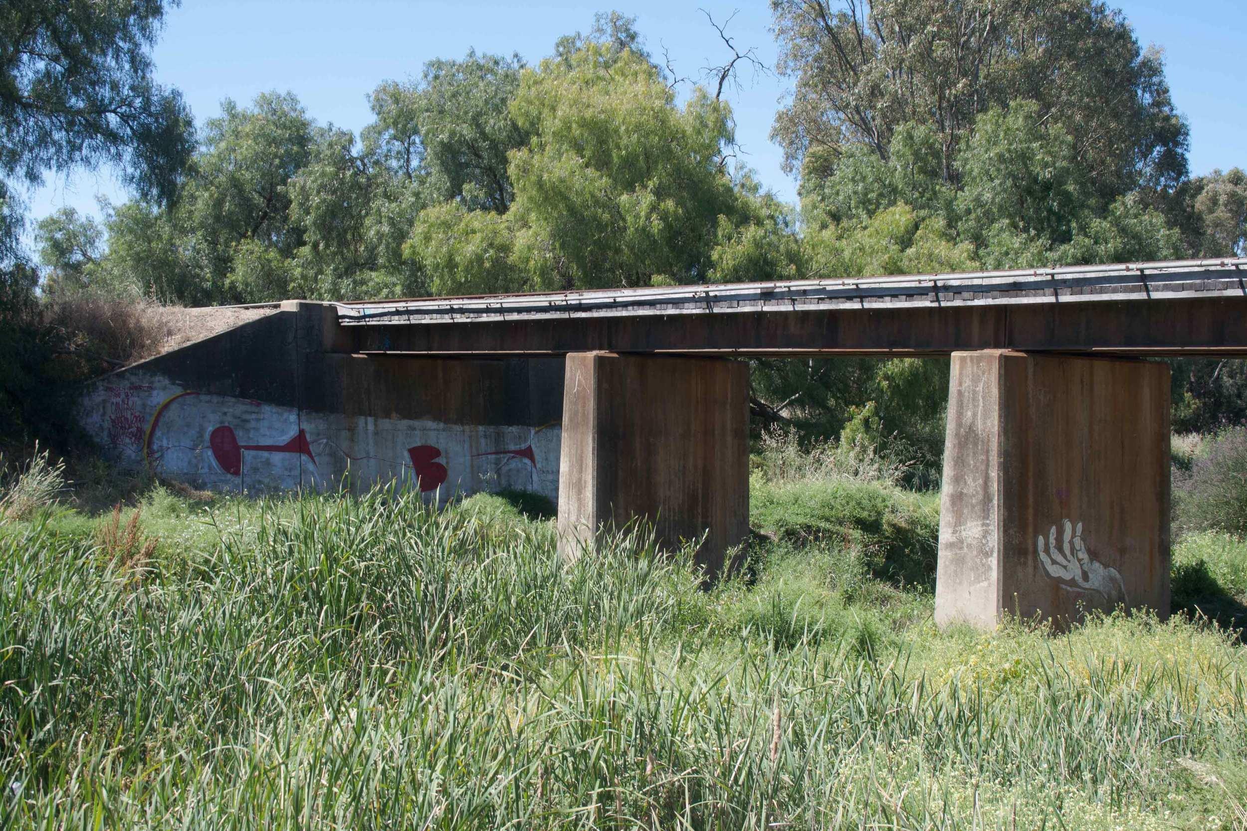 Bendigo-Creek-Bridge-Graffiti.jpg