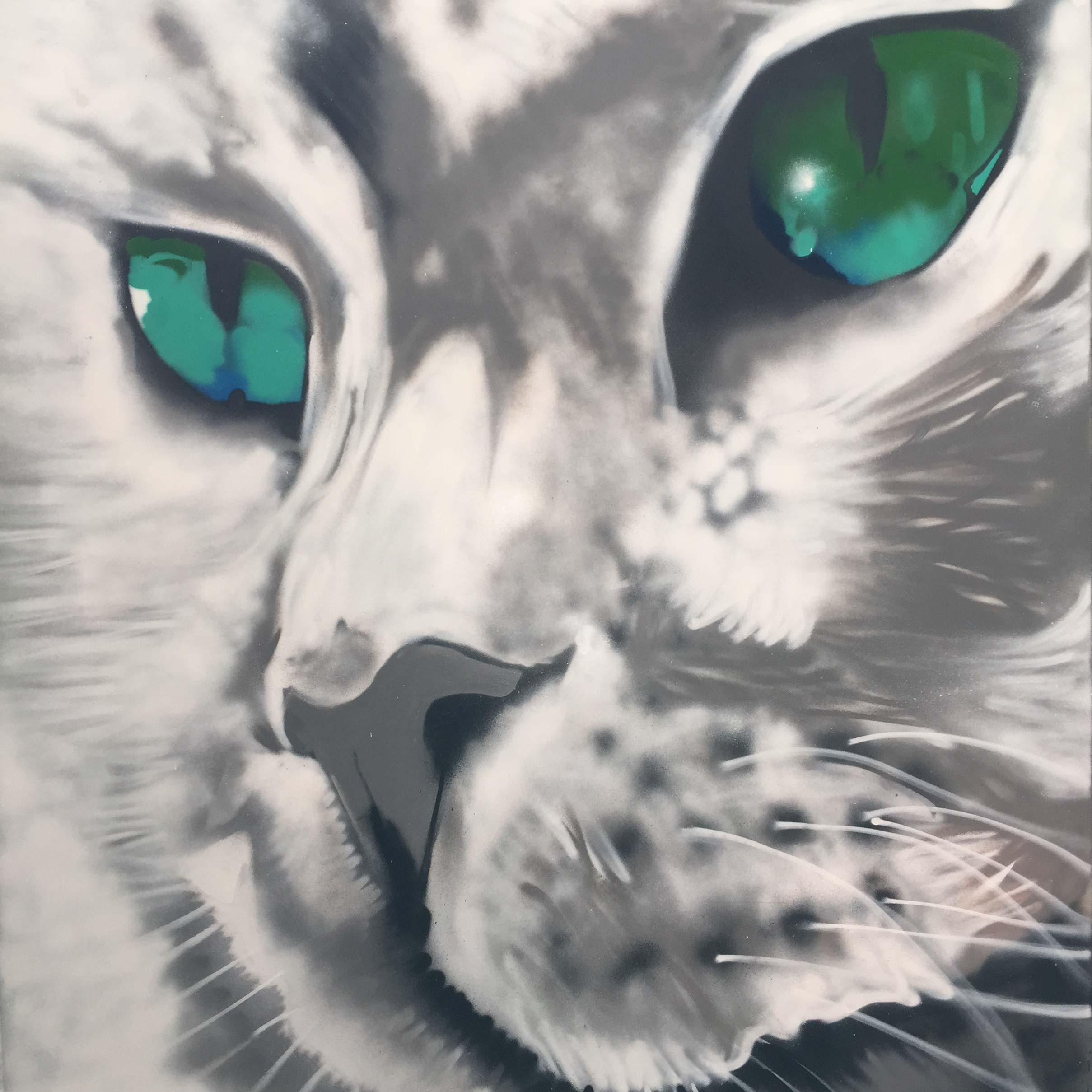 allans-walk-bendigo-cat-mural-art-graffiti