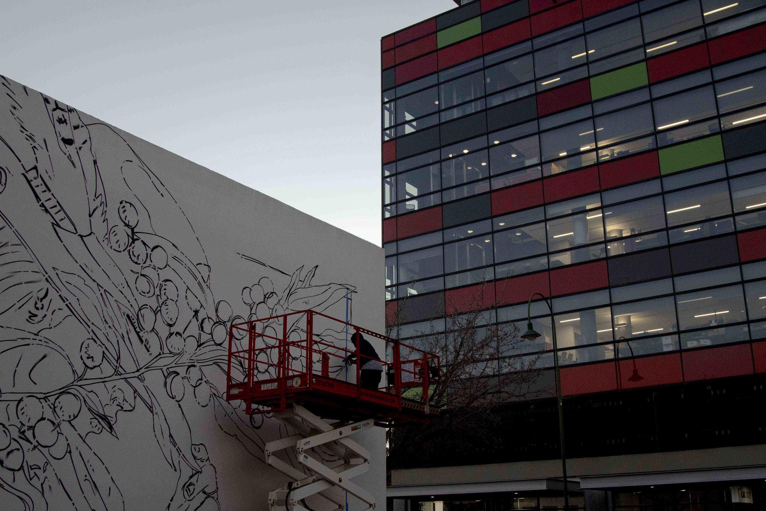 Jack Fran Paints Mural In Bendigo - Day 1-10.jpg