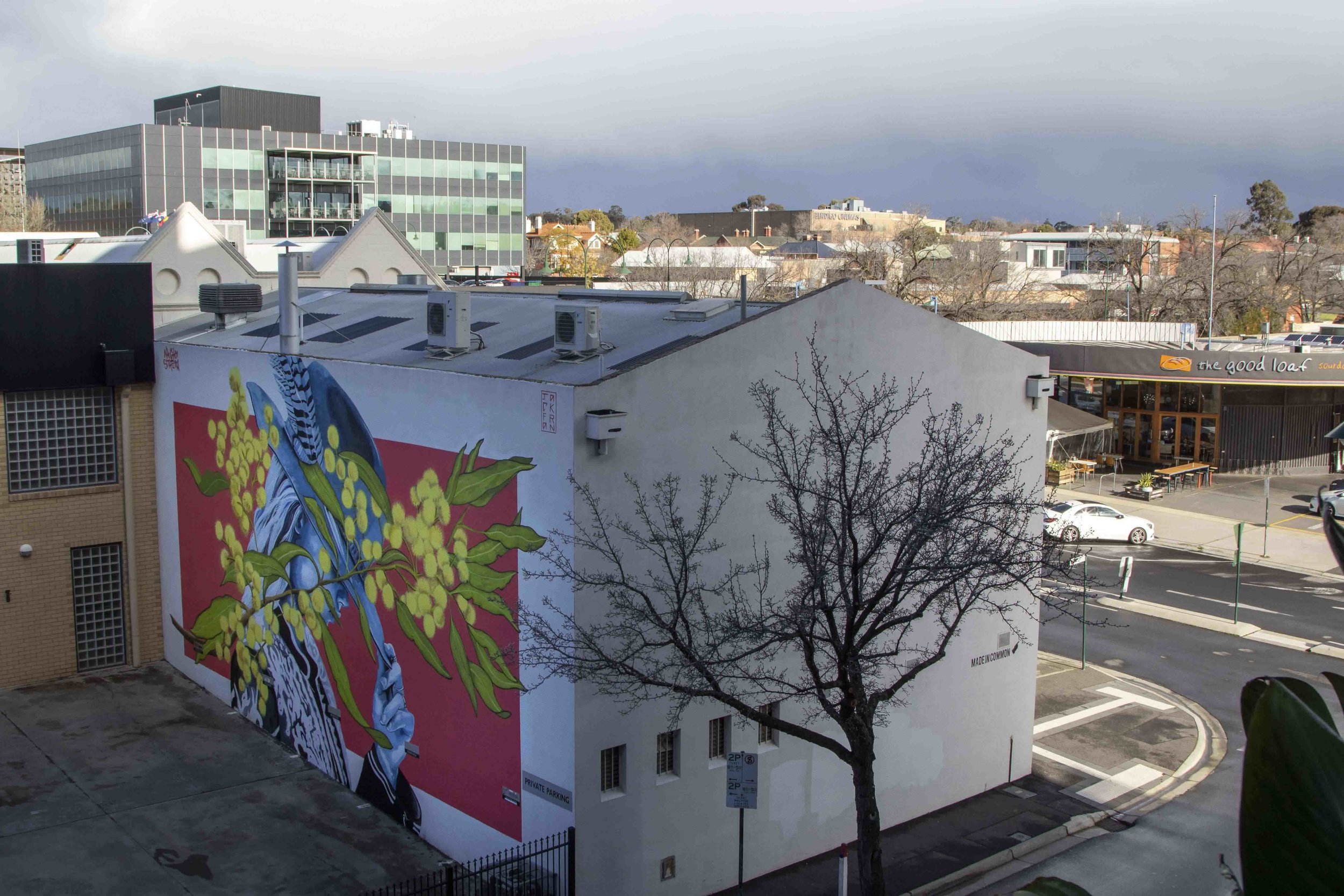 Jack Fran Paints Mural In Bendigo - Day 5-2.jpg