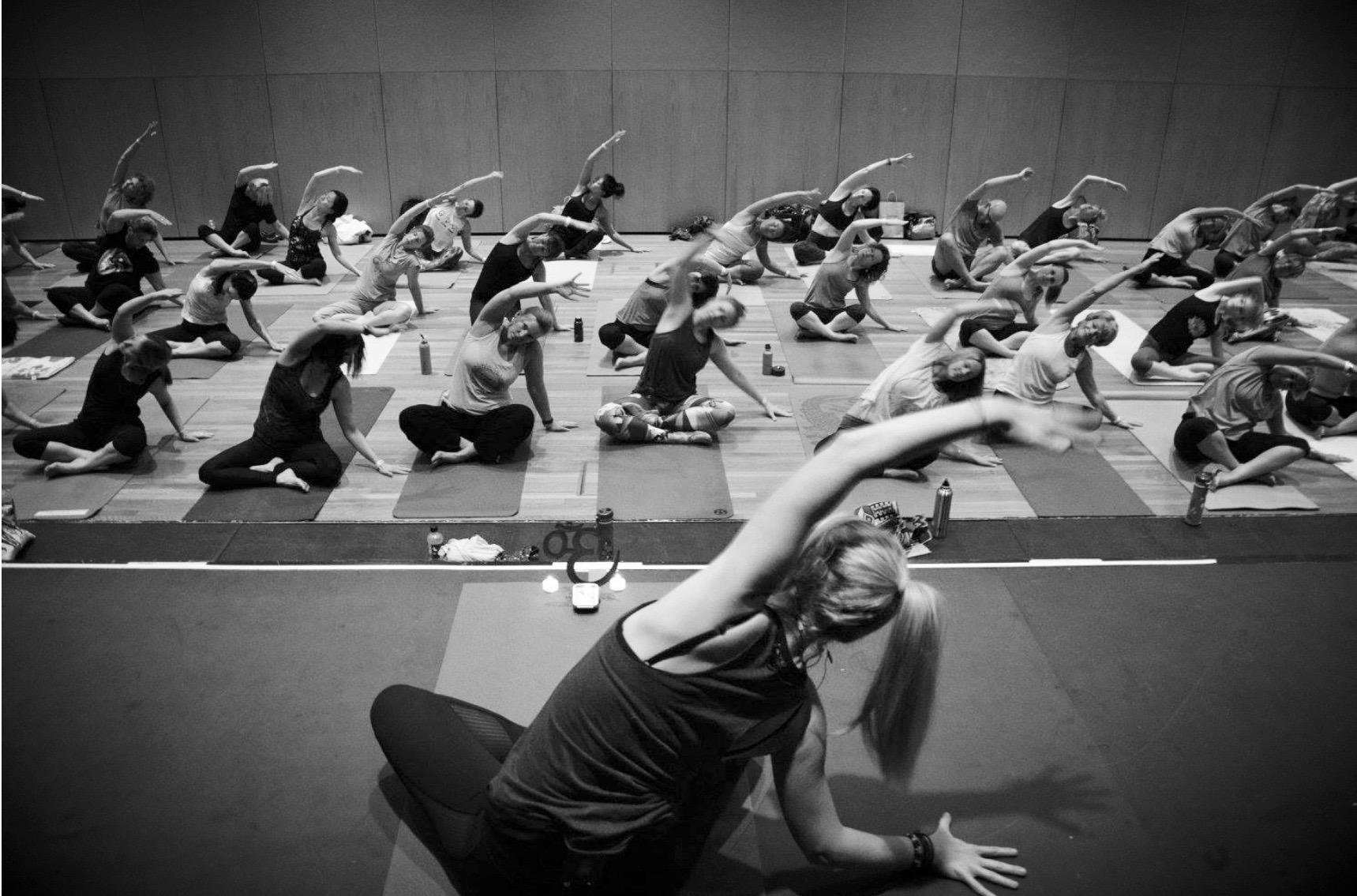 Picture by Sunshine Coast Yoga Fest