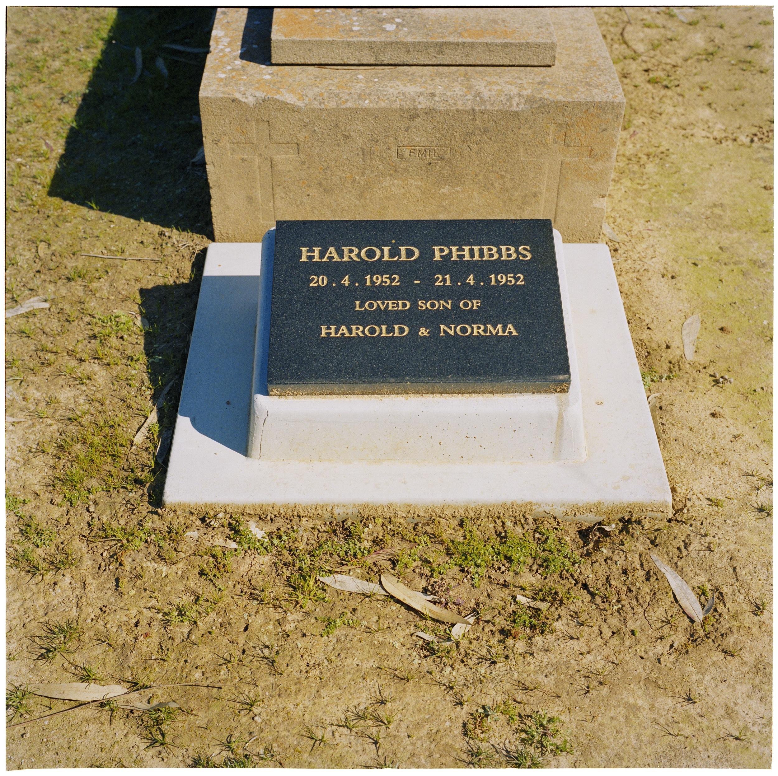 Harold Junior (2008)