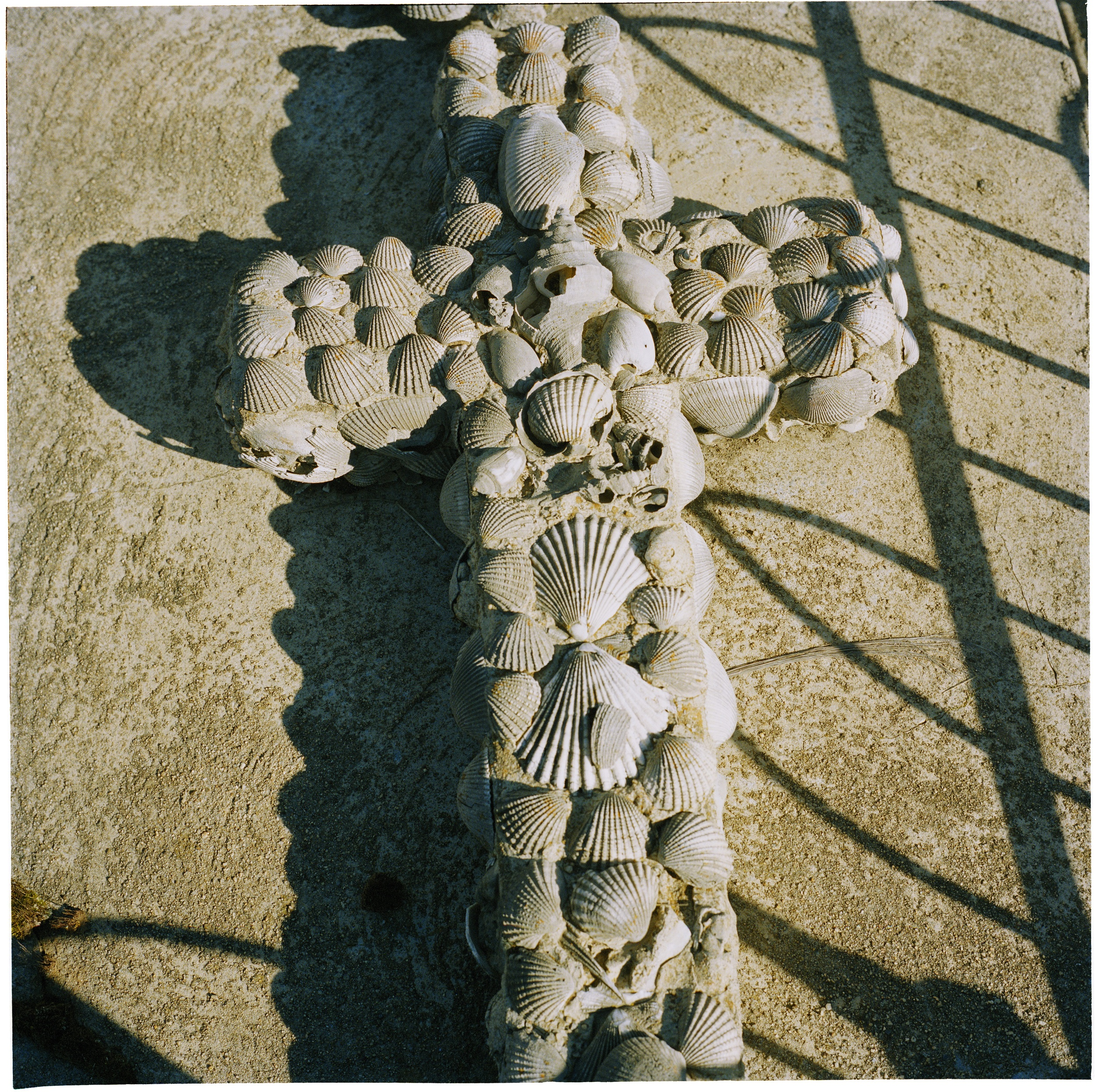 Cross of Shells (2008)