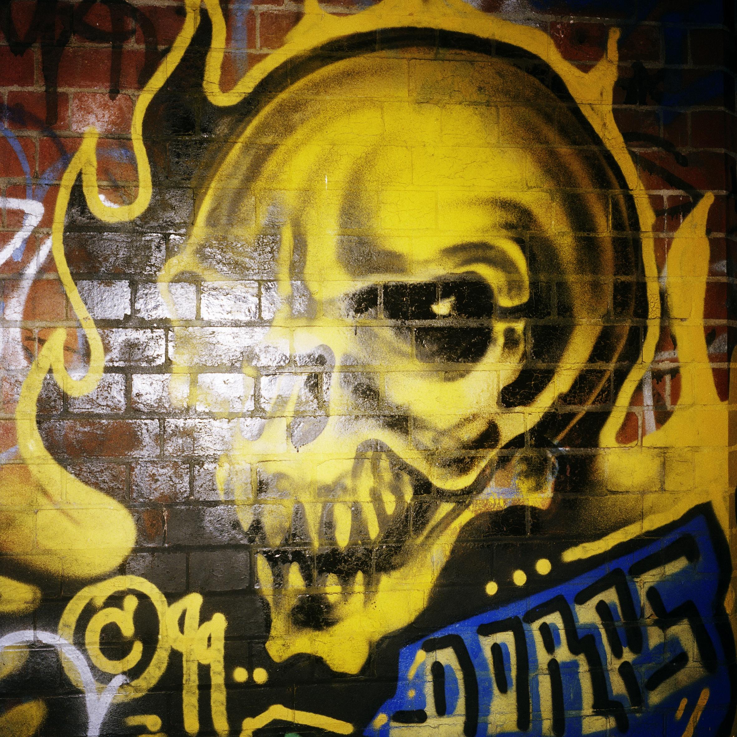 Skull (2009)